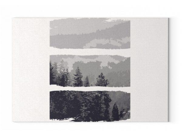 Poster Black White Nature - Leinwand mit Keilrahmen-6846